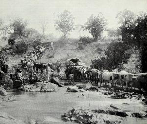 "ELLERTON -FRY PHOTO – ""PIONEER"" WAGONS CROSSING A DRIFT IN 1890 (Photo from Dr. Charles Waghorn's talk ""A Veterinary History of this country - 1890s to the Present"")"